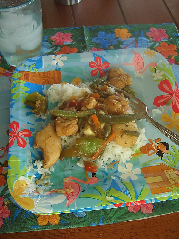 Dinner052808