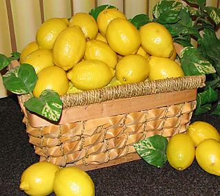 Lemon%20basket